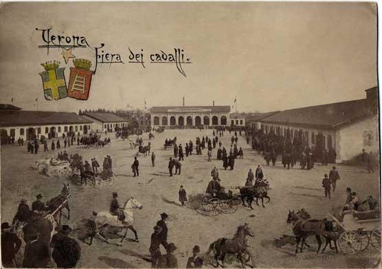 Fiera cavalli di verona sikelianews it perch 233 verona for Fiera di verona