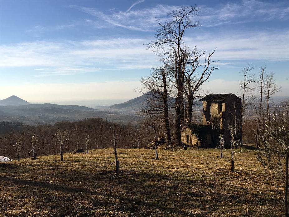 Vo' (Pd), Colli Euganei, Vista sul Monte Comun.