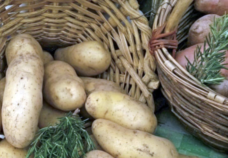 Prodotti tipici del Veneto, Patate di Bolca.