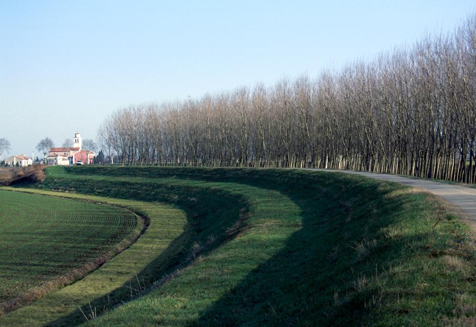Piacenza d