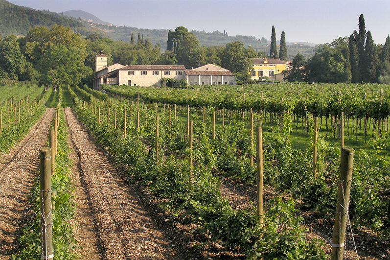 "Sant'Ambrogio di Valpolicella, località Gargagnago (Vr), ""Villa Serego Alighieri""."