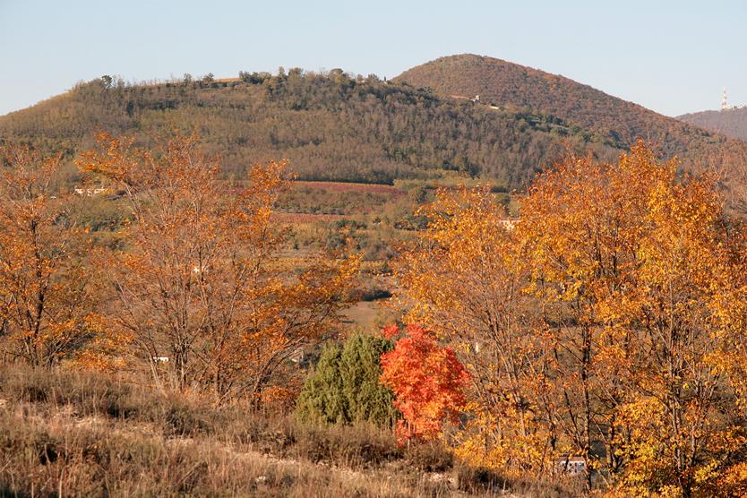 Baone, frazione di Valle San Giorgio (Pd), Parco Regionale dei Colli Euganei, Paesaggio autunnale