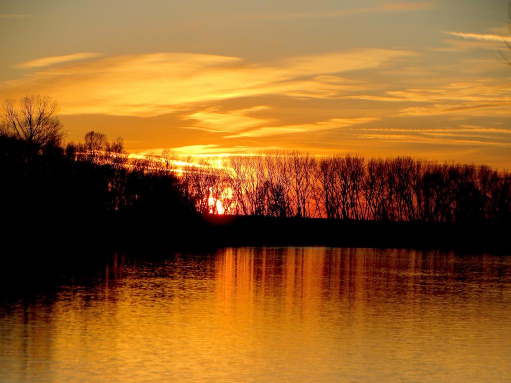 Parco regionale Veneto del Delta del Po (Ro), Ora d'oro sul fiume Po