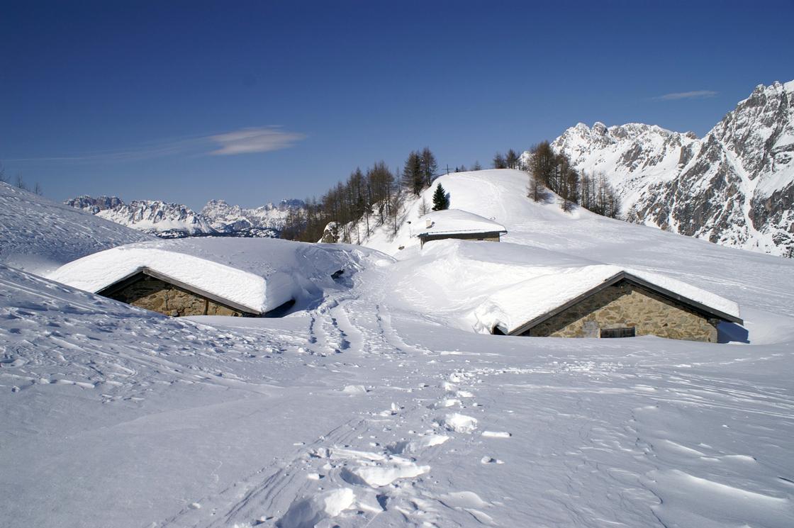 Vigo di Cadore (Bl), Vista invernale di Malga Doana.