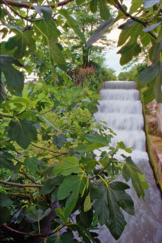 Canale del Bosco, Giavera del Montello (Tv), Salto d'acqua a servizio di uno storico opificio.